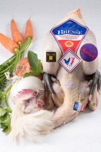 Poulette de Bresse