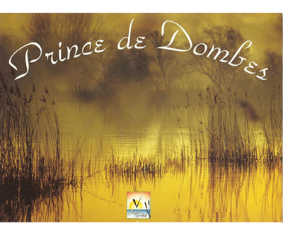 logo dombes mieral