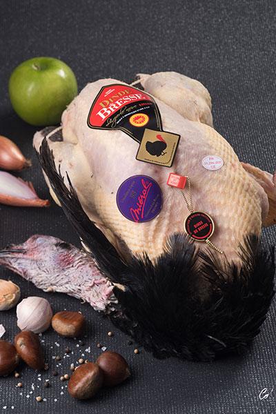 AOP Bresse turkey cock