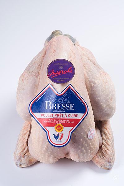 AOP Male Bresse chicken